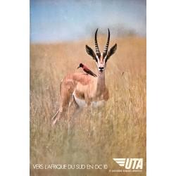 Agence Rapho - Zuber. UTA. Vers l'Afrique du Sud en DC-10. Ca 1970.