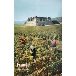 Féher. France. Les vins de bourgogne. 1964.