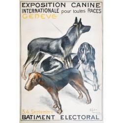 Henri Fehr. Exposition internationale canine Genève. 1921.